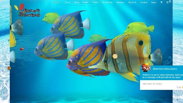 sharm home page concept
